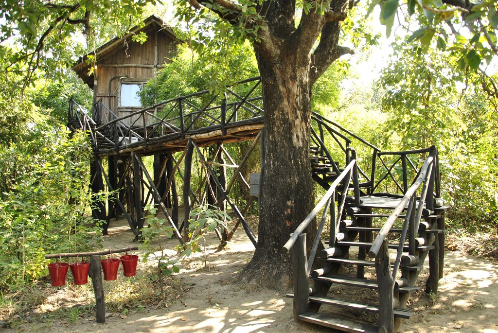 A Treehouse Of Dreams at The Tree House Hideway Resort