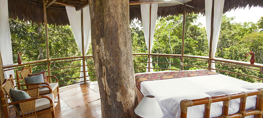 Treehouse Lodge Iquitos review