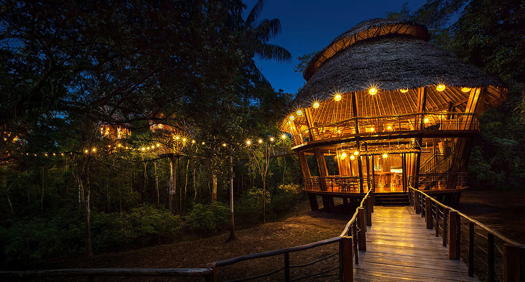 Experience The Best Of Amazon at Treehouse Lodge, Peru