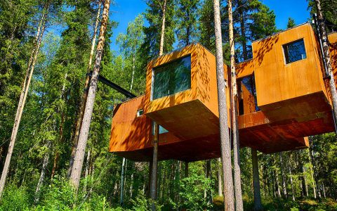 TreeHotel Sweden – A Magical Experience for Nature Lovers
