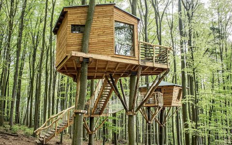 Robin's Nest Treehouse Hotel, Germany – A Beautiful Abode Befitting The Ways of Outlaws!